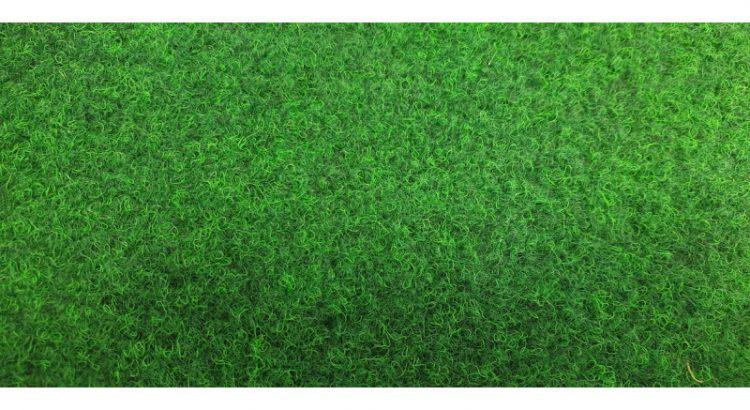 Anglický trávník